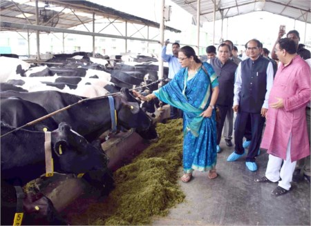 Farmers to be given training for milk trade in Maharashtra